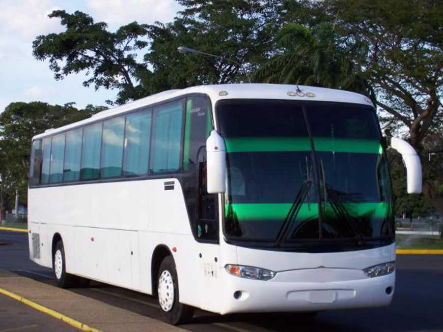 Bustransfers
